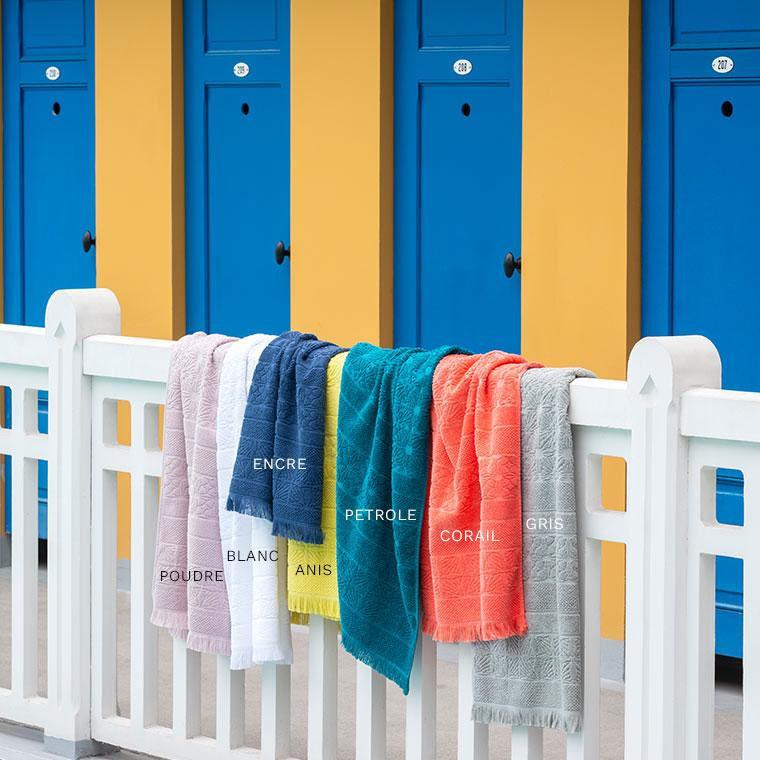 Serviette de toilette coton Chiara anis - 5