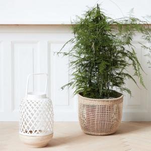 Lanterne blanche en bambou DECO
