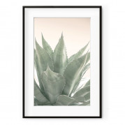 Cadre rectangulaire agaves DECO