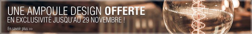 Une ampoule offerte dès 150 euros d'achat !
